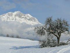 hausthomas-winter-1.jpg