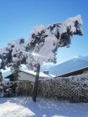 hausthomas-winter-10.jpg