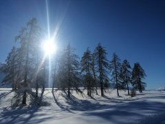 hausthomas-winter-13.jpg