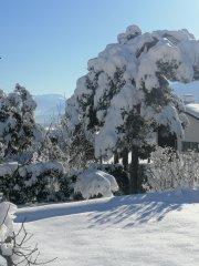 hausthomas-winter-8.jpg